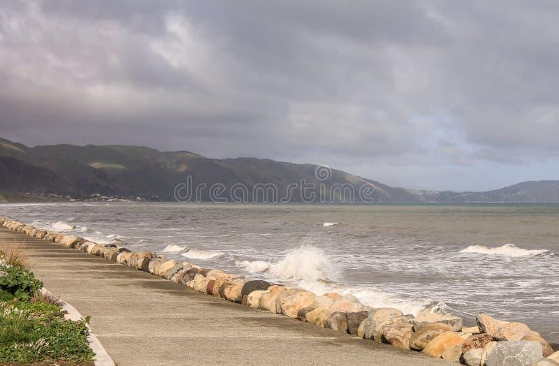 Um litoral na costa de Kapiti imagens de stock royalty free