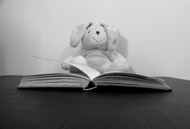 Um livro aberto encontra-se em uma tabela Um brinquedo do luxuoso, borrado levemente, é assento visto no fundo foto de stock royalty free