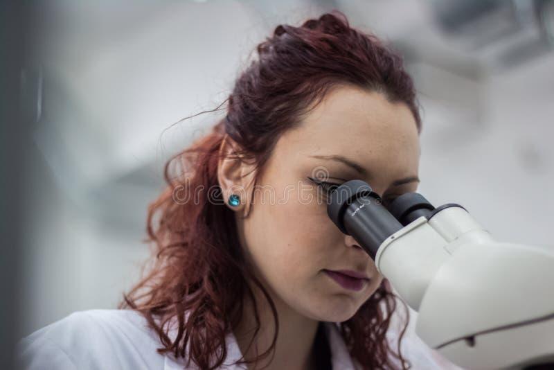 Um lookin médico ou científico fêmea do doutor do pesquisador ou da mulher foto de stock royalty free