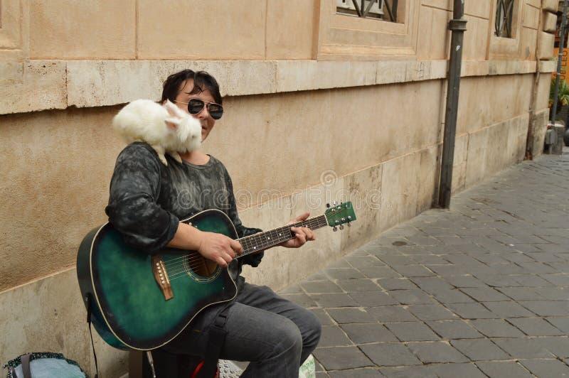 Um músico da rua joga a guitarra e guarda um coelho branco em seu ombro para o entretenimento dos turistas no centro foto de stock