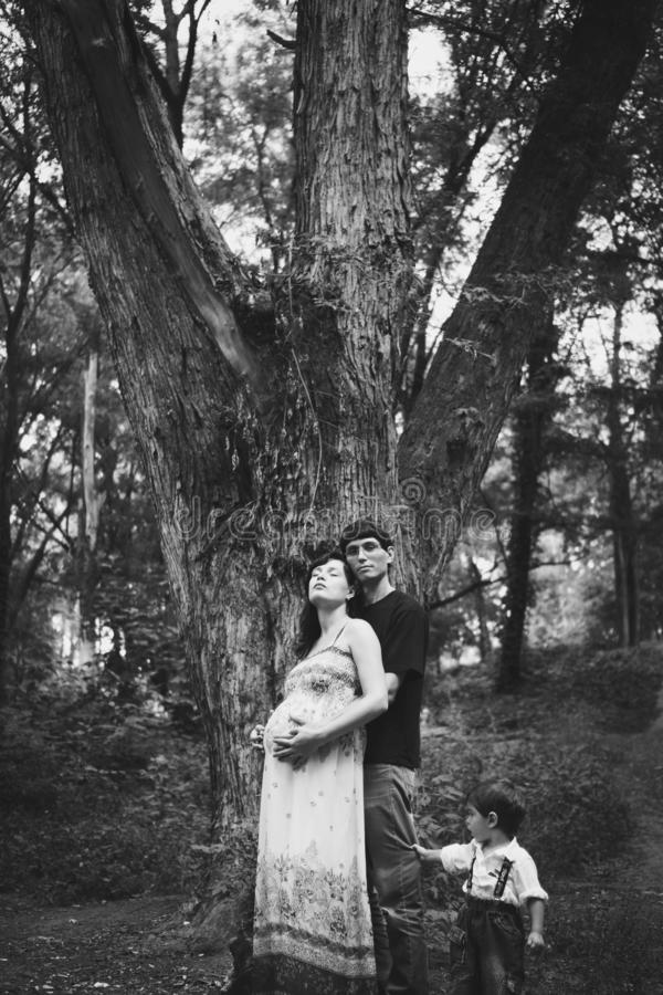Um marido, uma esposa grávida e um filho pequeno estão estando perto de uma árvore grande, a criança estão guardando um paizinho  foto de stock