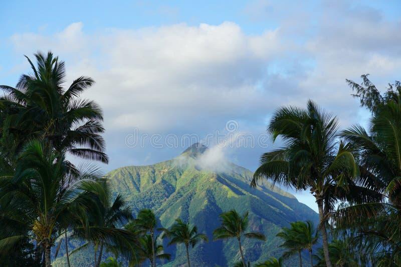 Um Maui bonito Mountain View imagem de stock royalty free