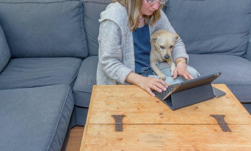 Um meio envelheceu a mulher em casa que usa seu laptop com seu cão de estimação igualmente que olha a tela fotografia de stock