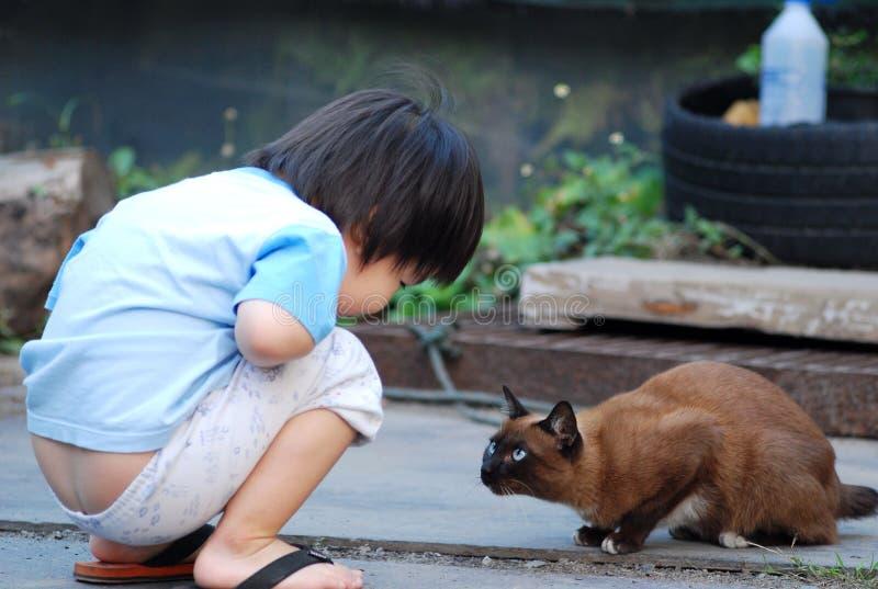 Um menino e um gato, são amigos foto de stock