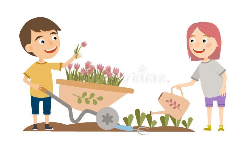 Um menino e uma menina no jardim O menino transporta tulipas, menina que molha os tiros das plantas ilustração stock