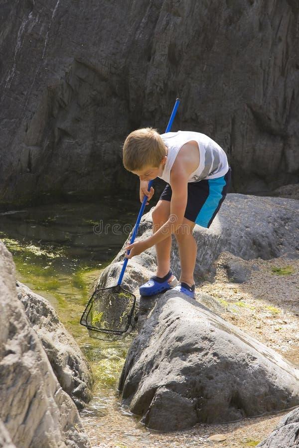 Um menino novo na pesca do beira-mar imagens de stock