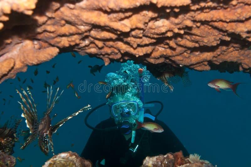 Um mergulhador e uns peixes tropicais são subaquáticos foto de stock royalty free