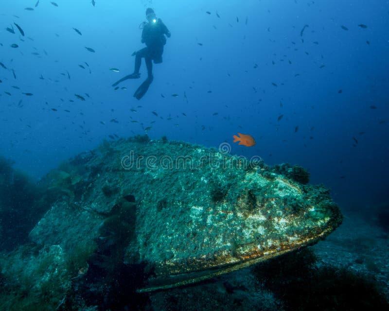 Um mergulhador fêmea novo Shines uma luz em uma destruição subaquática pequena fora de Catalina Island em Califórnia imagens de stock