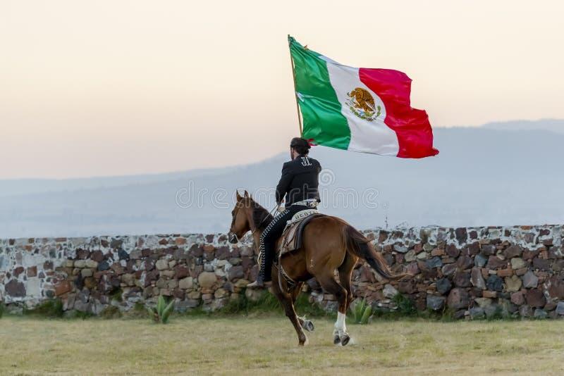 Um mexicano considerável mesmo Charro levanta na fazenda de Front Of A no campo mexicano ao guardar a bandeira mexicana fotografia de stock