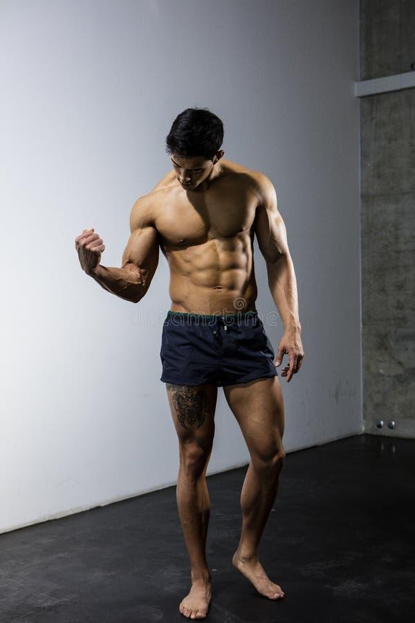 Um modelo asiático Flexing His Bicep da aptidão imagens de stock royalty free