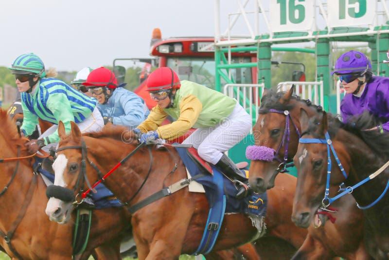 Um momento após o começo na corrida de cavalos imagem de stock royalty free