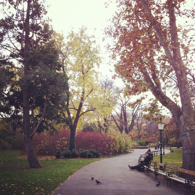Um momento do romance em Stadtpark, Viena foto de stock royalty free