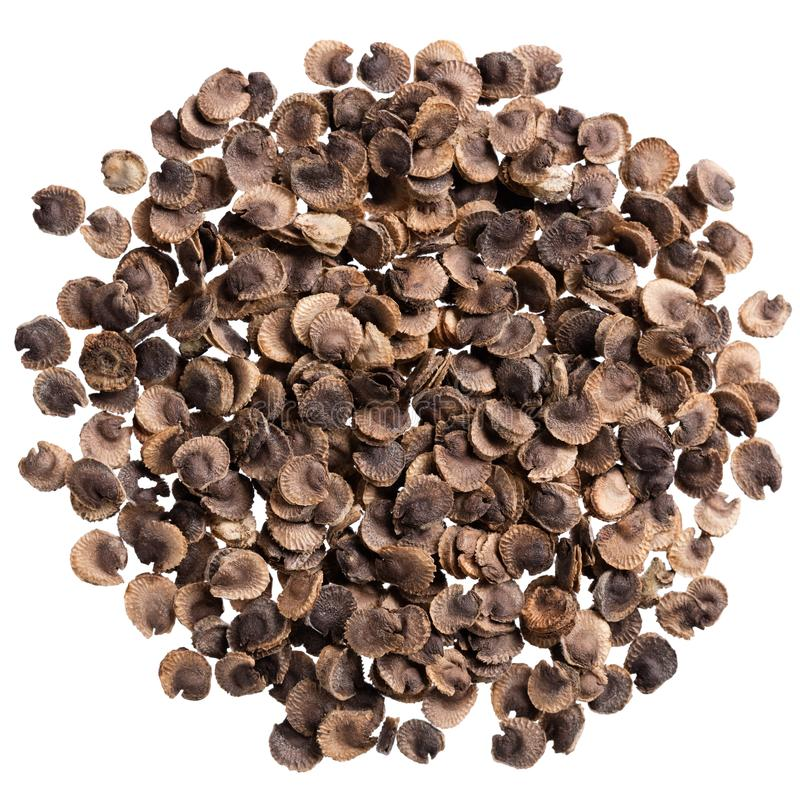 Um montão de sementes da qualidade do malva, flor para seu jardim adorável fotos de stock royalty free
