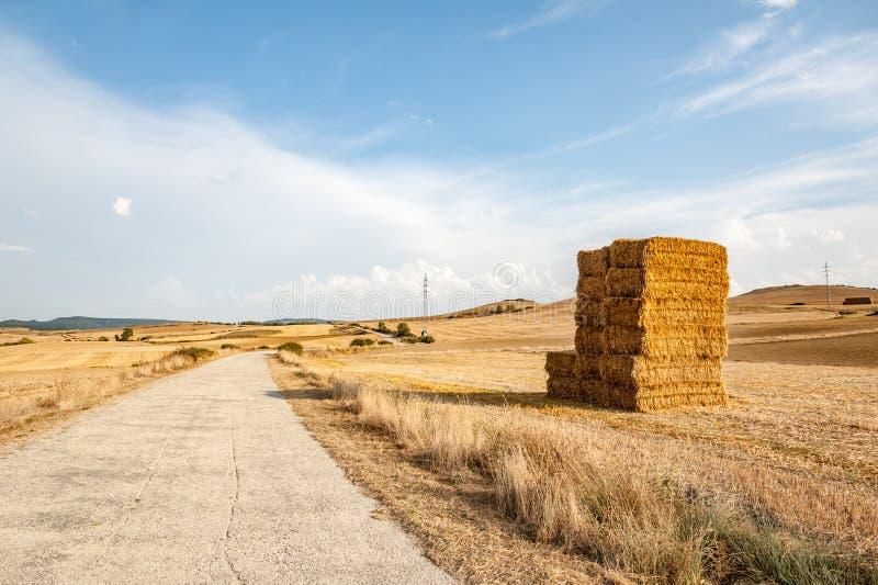 Um monte de feno ao lado da estrada no campo fotografia de stock