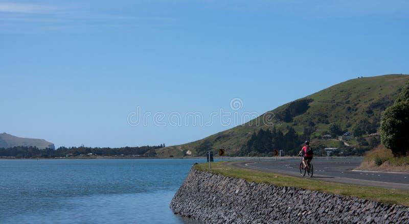Um motociclista da mulher que dá um ciclo ao longo da água na península de Otago perto de Dunedin na ilha sul em Nova Zelândia foto de stock royalty free
