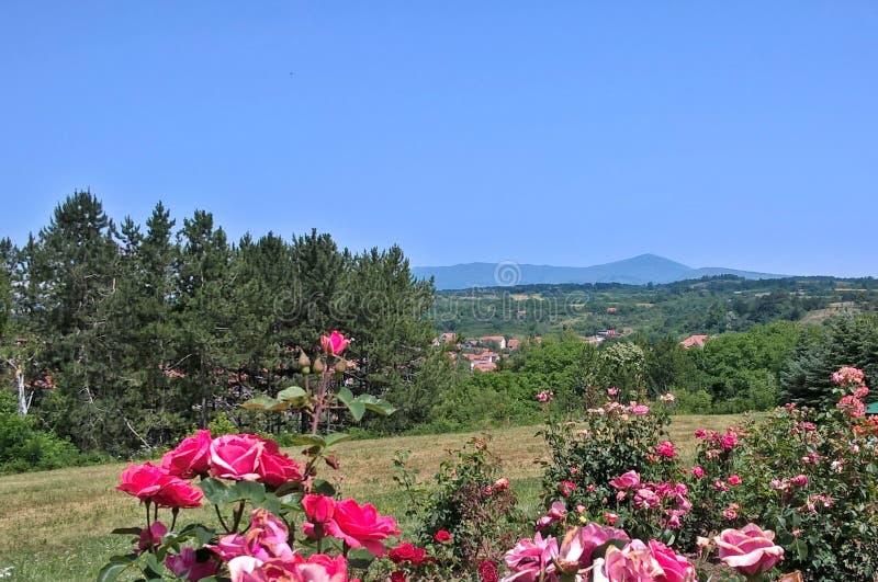 Um Mountain View - montanha mágica Rtanj, Sérvia oriental, Siljak máximo, 1565 m imagem de stock royalty free