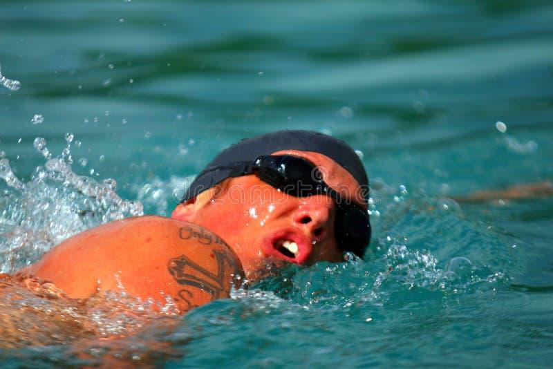 Um nadador novo imagem de stock