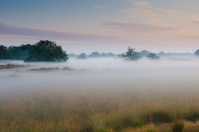 Um nascer do sol nevoento foto de stock royalty free