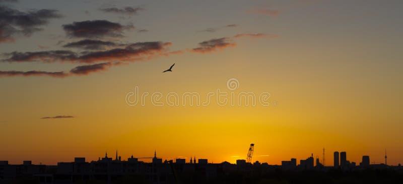 Um nascer do sol sobre Tallinn imagens de stock royalty free