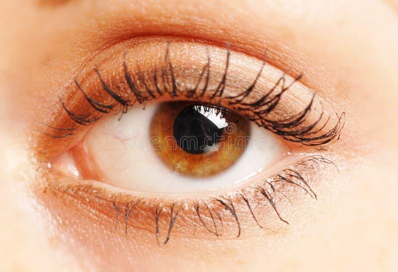 Um olho aberto fotografia de stock
