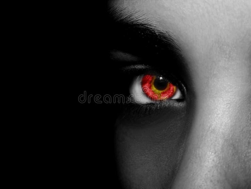 Um olho perspicaz bonito do olhar Feche acima do tiro imagem de stock