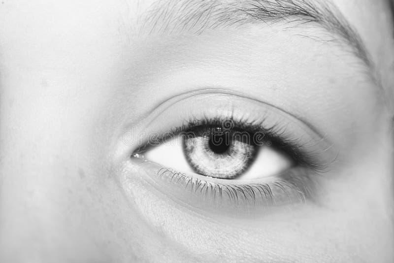 Um olho perspicaz bonito do olhar Feche acima do tiro foto de stock