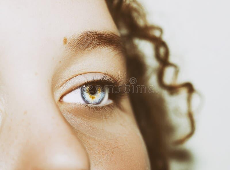 Um olho perspicaz bonito do olhar Feche acima do tiro imagens de stock