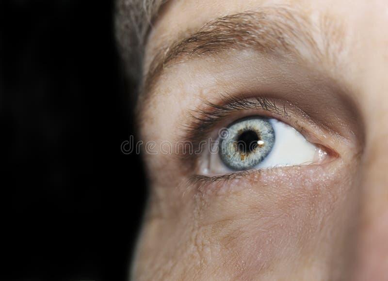 Um olho perspicaz bonito do olhar Feche acima do tiro O olho de uma mulher idosa foto de stock