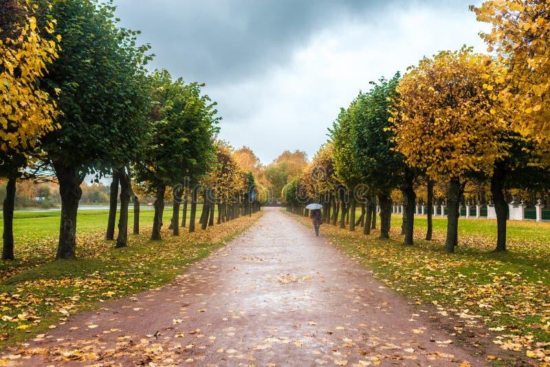 Um outono em um parque Kuskovo em Moscou imagem de stock
