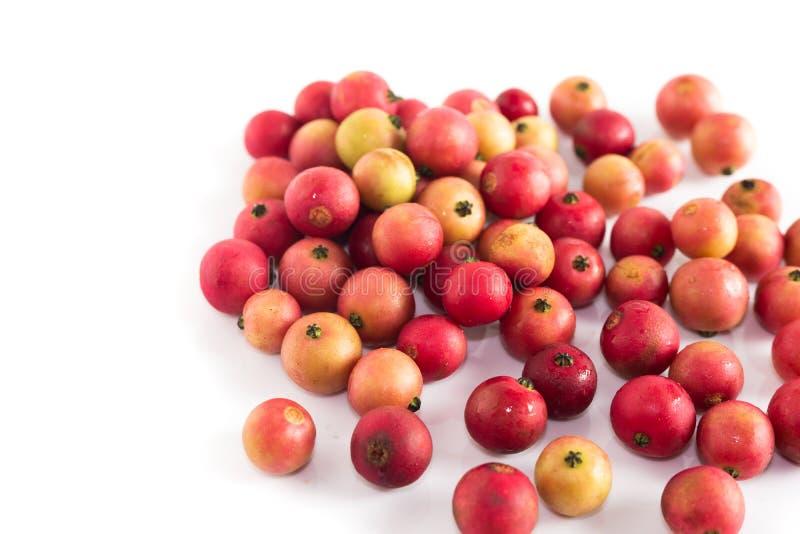 Um outro fruto da cereja jamaicana é Cherry Calabura Malayan Doce em um fundo branco imagem de stock royalty free