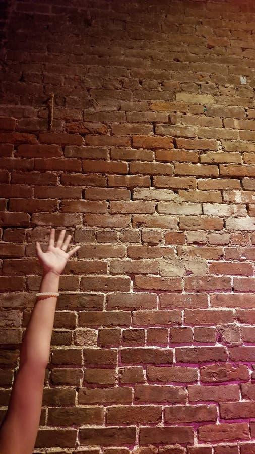 Um outro tijolo na parede imagem de stock