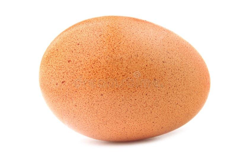 Um ovo imagens de stock