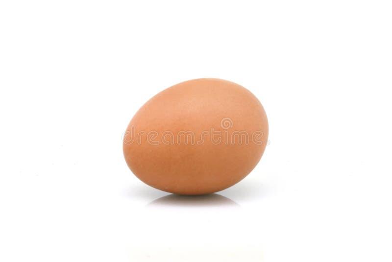 Um ovo imagem de stock royalty free