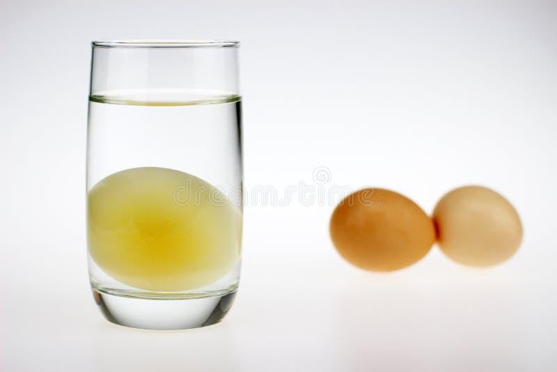 Um ovo cru sem shell imagens de stock