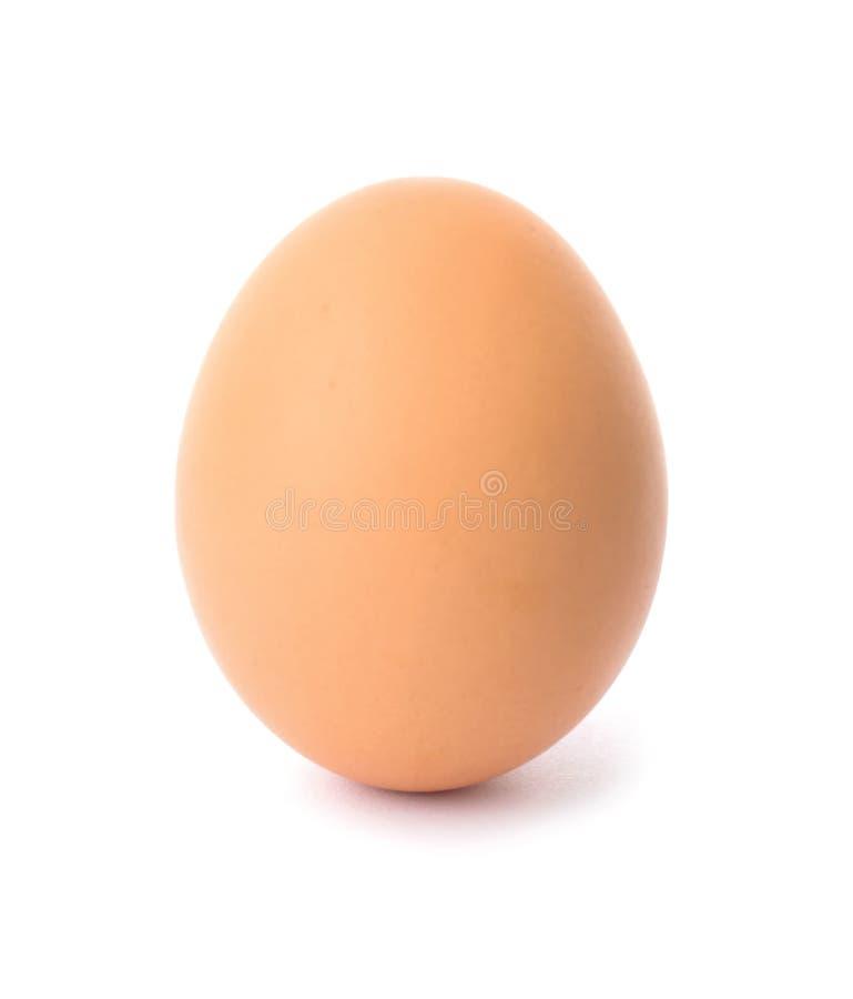 Um ovo marrom da galinha fotografia de stock