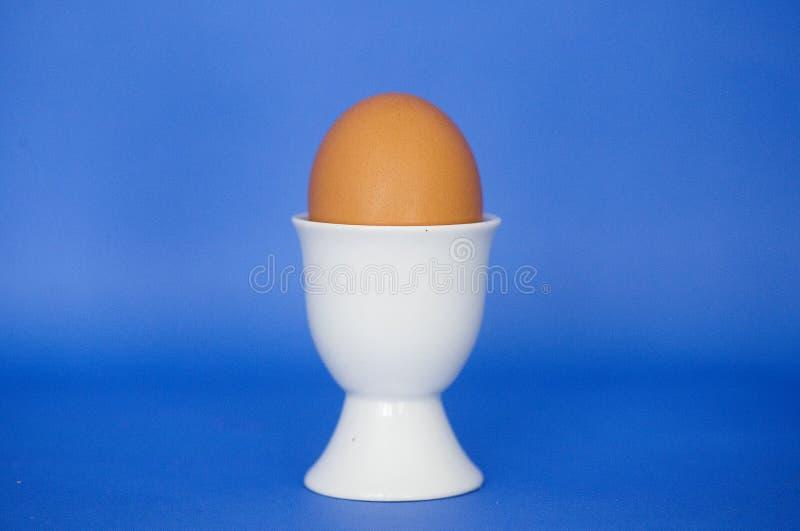 Um ovo marrom em um copo de ovo branco em um fundo azul imagem de stock royalty free