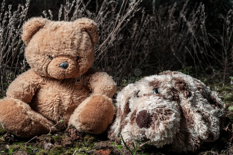 Um pãozinho de pelúcia triste é esquecido em uma musgo, ao lado dele está um ursinho de pelúcia fotos de stock