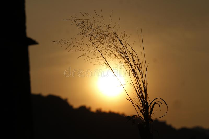 Um pôr do sol com um clique perfeito fotos de stock royalty free