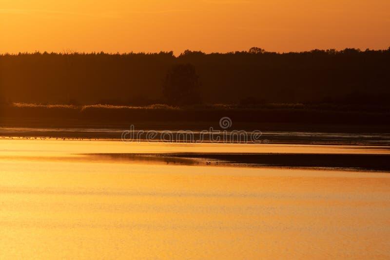 Um pôr do sol dourado sobre um lago na área de Milicz imagem de stock