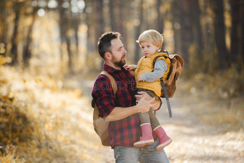 Um pai maduro que guarda um filho da criança em uma floresta do outono, falando fotografia de stock
