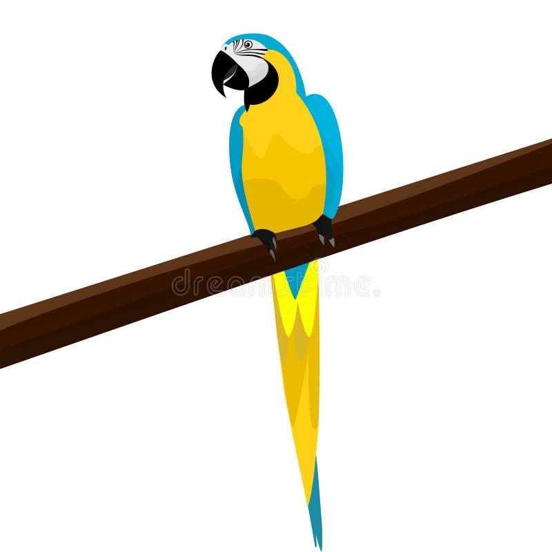 Um papagaio bonito que senta-se em um ramo de uma ilustração do vetor da árvore ilustração royalty free