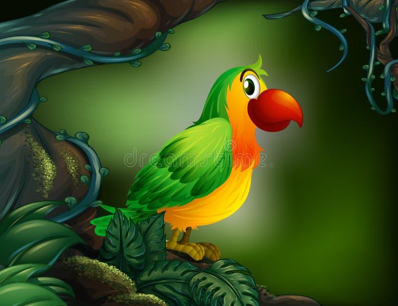 Um papagaio na floresta tropical ilustração do vetor