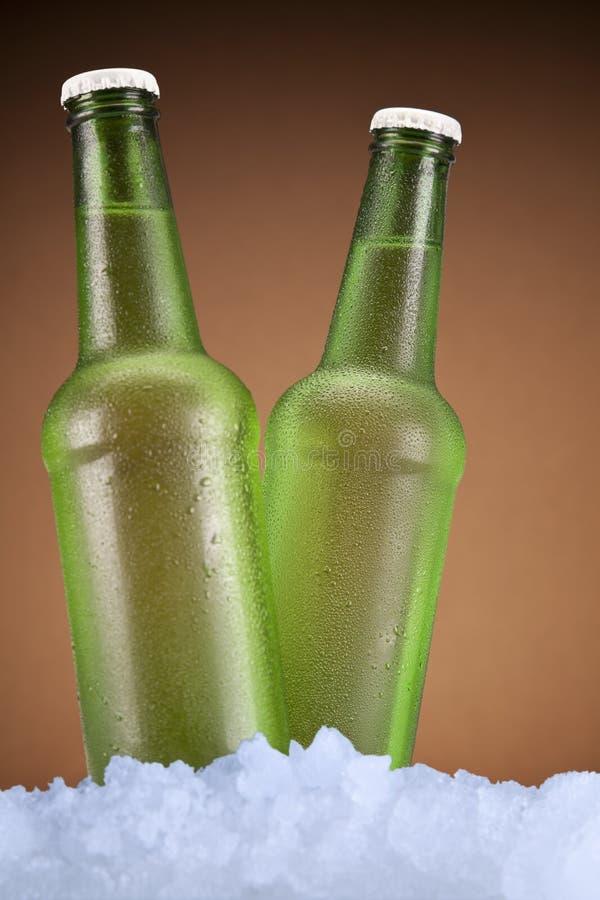 Um par cervejas foto de stock