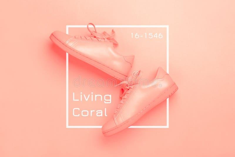 Um par das sapatas corais no fundo coral fotos de stock royalty free