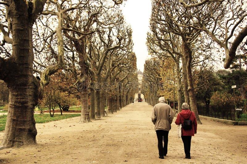 Um par idoso que anda ao longo do parque em Paris, querendo saber em uma aleia entre o sepia alto das árvores fotografia de stock
