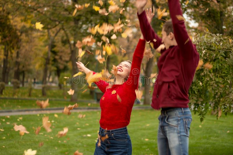 Um par joga acima as folhas amarelas, bordo, acima, enganando ao redor, outono data fotos de stock royalty free