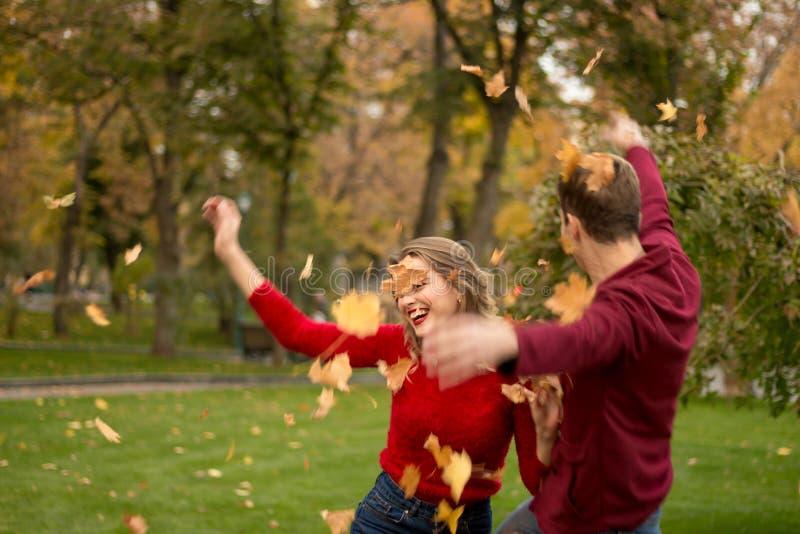 Um par joga acima as folhas amarelas, bordo, acima, enganando ao redor, outono data foto de stock