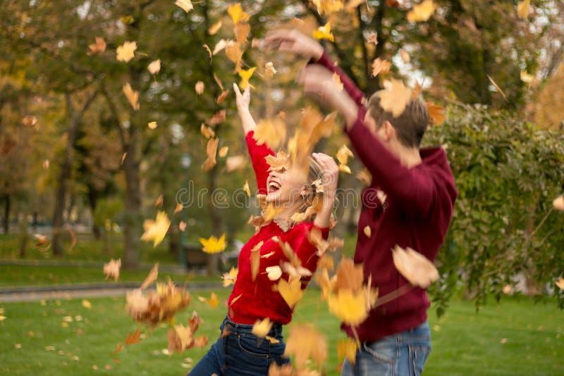Um par joga acima as folhas amarelas, bordo, acima, enganando ao redor, outono data imagens de stock