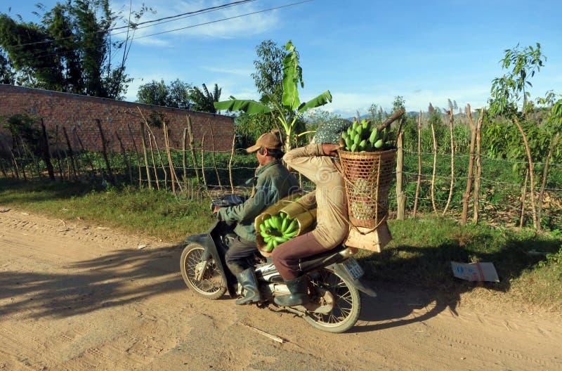 Um par local que transporta bananas na motocicleta foto de stock royalty free