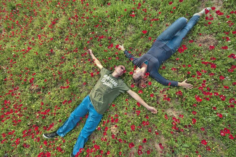 Um par no campo das anêmonas imagens de stock